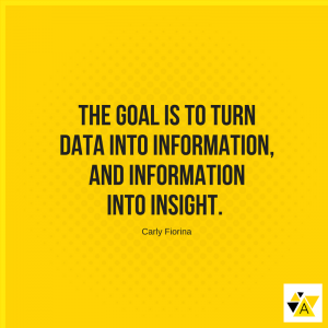 The goal is to turn data into information, and information into insight. - Carly Fiorina